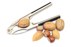 Nutcrackers with nuts Stock Photo