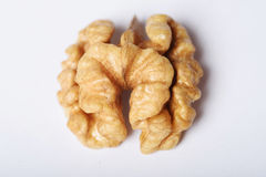 Nutmeat da qualidade superior meio Fotos de Stock