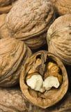 Nutmeat dichte omhooggaand Stock Foto