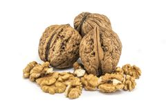 Nutmeat with shell and white bakcground. For food stock images