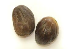 Nutmeg Royalty Free Stock Photo