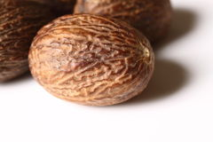 Nutmeg. Close up photograph of nutmeg royalty free stock images