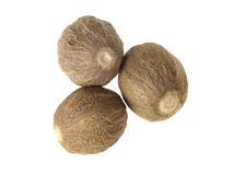 Nutmeg Stock Photo