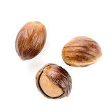 Nutmeg. On the white background isolated stock photo