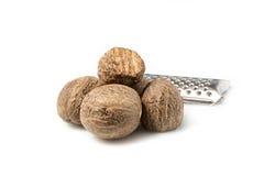 Nutmeg Zdjęcie Royalty Free