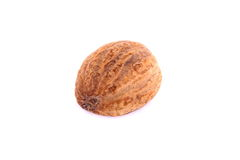 Nutmeg Stock Image