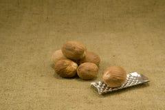 Nutmeg Royalty Free Stock Photos