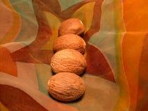 Nutmeg Stock Images