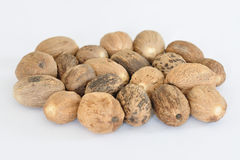 Nutmeg apple. Detailled nutmeg apple in circle Stock Photography