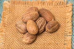 Nutmeg Stock Photos
