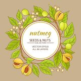 Nutmeg vector frame Stock Photography