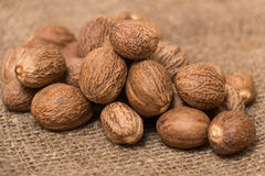 Nutmeg Royalty Free Stock Image