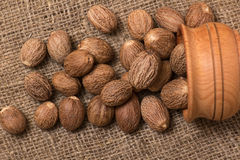 Nutmeg Stock Photography