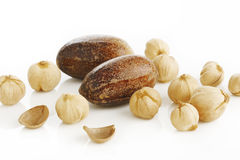 Nutmeg and cardamom seed on white Stock Photography