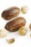Nutmeg and cardamom seed Stock Photo