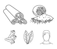 Nutmeg, cinnamon, bay leaves, cloves.Herbs and spices set collection icons in outline style vector symbol stock. Illustration Stock Image