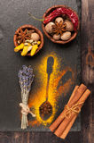 Nutmeg, cinnamon, cardamom, star anise, hot chili and turmeric Royalty Free Stock Image