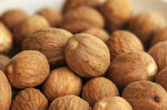Nutmeg close-up Royalty Free Stock Images