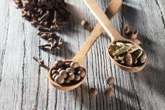 Nutmeg, clove and allspice in old spoon on wood Royalty Free Stock Image