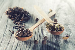 Nutmeg, clove and allspice in old spoon on wood Stock Photography