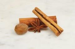 Nutmeg cynamon i fotografia stock