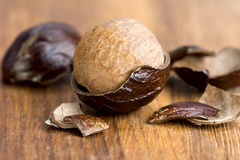Nutmeg in a fragmented nutshell. On a wooden plate Stock Photography