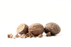 Nutmeg Stock Photography