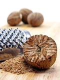 Nutmeg with grater Stock Image