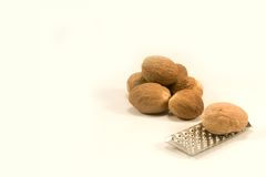 Nutmeg with grater Royalty Free Stock Photo
