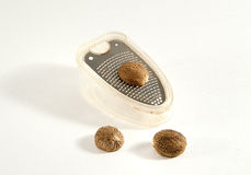 Nutmeg and grater Royalty Free Stock Image