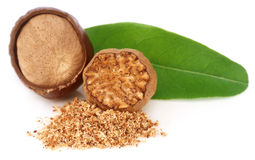 Nutmeg with green leaves Stock Photography