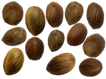 Nutmeg isolated Stock Photography