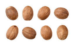 Nutmeg isolated on white Royalty Free Stock Photos