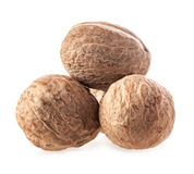 Nutmeg Stock Images