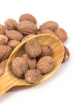 Nutmeg Royalty Free Stock Photo
