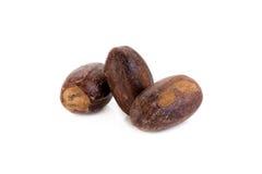 Nutmeg isolated on white background Stock Image