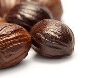 Nutmeg (jaifal india ) Myristica fragrans Stock Photos