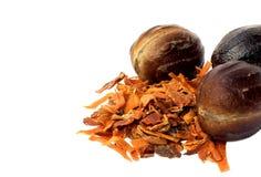 Nutmeg or Jaifal Spice with Javitri Spice Stock Photos