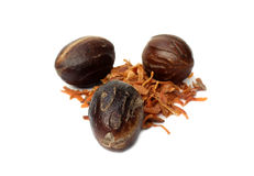 Nutmeg or Jaifal Spice with Javitri Spice Stock Image