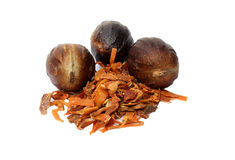 Nutmeg or Jaifal Spice with Javitri Spice Royalty Free Stock Images