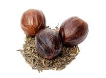 Nutmeg or Jaifal Spice with Zira seed Royalty Free Stock Image