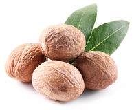 Nutmeg with leaves. Stock Photos
