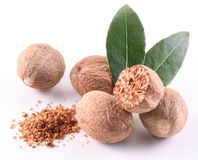 Nutmeg with leaves. royalty free stock photography