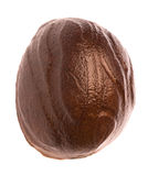 Nutmeg Macro Isolated Royalty Free Stock Photo