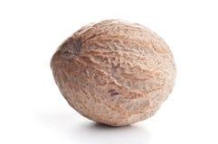 Nutmeg (Myristica fragrans) Stock Photo