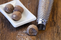 Nutmeg and nutmeg grater Stock Image