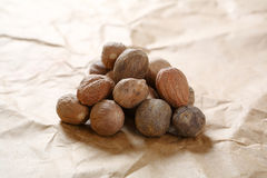 Nutmeg on the paper Stock Image