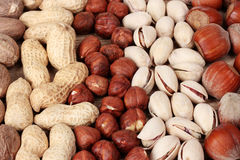 Nutmeg, peanuts, hazelnuts and almonds Royalty Free Stock Photo