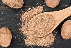 Nutmeg powder in spoon Royalty Free Stock Image