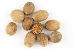 Nutmeg seeds isolated on a white background Stock Images